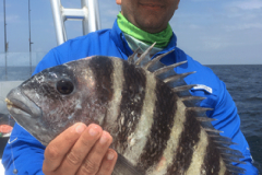 First-City-Fishing-Charters-Web-Images-Vertical_0007_2016-03-24-13.57.19---Copy
