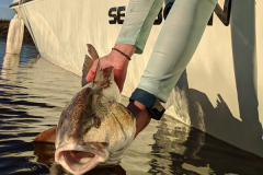 First-City-Fishing-Charters-St-Augustine-Photo-Gallery-32